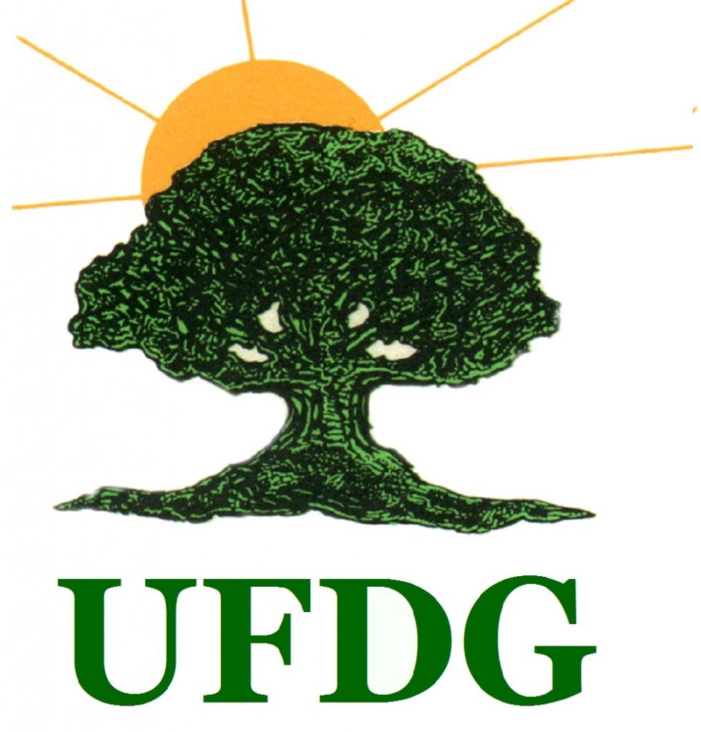 logo ufdg