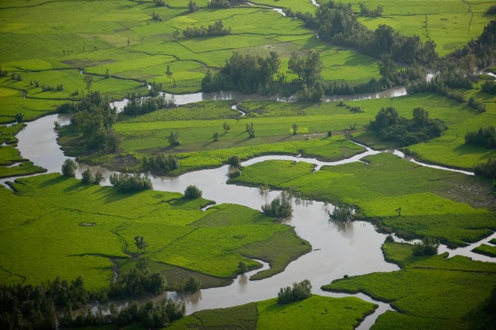 Zone agricole des côtes maritimes guineennes.