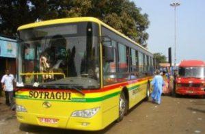 bussotragui